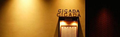 Img_cicada1